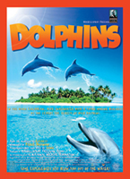 Dolphins-Film145